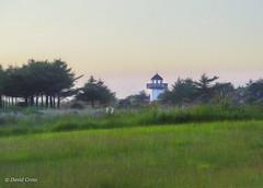 Lighthouse (buffdawgus) Tags: lighthouse pacificcoast oregoncoast canonef24105mmf4lisusm lightroom6 topazsw landscape westcoast currycounty canon5dmarkiii oregon
