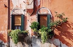 Venetian windows (Ciceruacchio) Tags: window fenêtre finestra cannaregio venezia venice venise venecia venedig veneza венеция ヴェネツィア 威尼斯 βενετία veneto vénétie italia italy italie italien nikon
