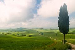 val d'Orcia-022 (bonacherajf) Tags: italia italie valdorcia poderebelvedere tuscany toscane