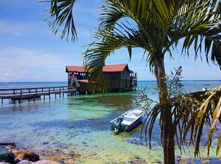 Caribbean Lifestyle, Roatán Honduras