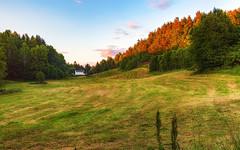 Midtstøl (Øyvind Bjerkholt (Thanks for 55 million+ views)) Tags: farmland gård midtstøl myra arendal norway summer dry canon