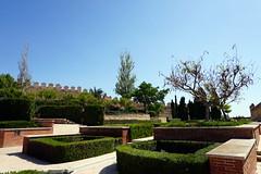 Alcazaba garden and walls, Almeria, Spain (mattk1979) Tags: almeria sun outdoors city buildings spain europe old historic arab moorish alcazaba fortress sky clouds garden walls castle
