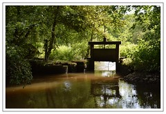 barrage rivière (Christ.Forest) Tags: nature eau barrage calme verdure brique vert green water river