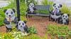 Panda Topiary (augphoto) Tags: augphotoimagery creative outdoors pandas plants sculpture topiary unique unusual greenwood southcarolina unitedstates