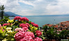 Summer terrace (borisnaumoski) Tags: ohird macedonia lake town summer june flowers yard garden villa nature view