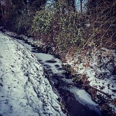 Frozen stream (Kol Tregaskes) Tags: koltphotography photo photography photooftheday pic picoftheday picture pictureoftheday