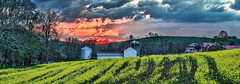 IMG_5145-47Ptzl1scTBbLGERk (ultravivid imaging) Tags: ultravividimaging ultra vivid imaging ultravivid colorful canon canon5dm2 clouds scenic sunsetclouds sky stormclouds sunset vista rural rainyday fields farm barn farmhouse pennsylvania pa panoramic painterly twilight evening spring