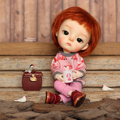 A little break to rest... (Passion for Blythe) Tags: ming secretdoll secretdollming bjd tiny cute doll birds rest