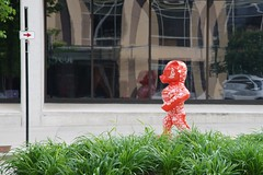 Bucky Badger on the move down Wisconsin Avenue (humbletree) Tags: madisonwisconsin buckybadger