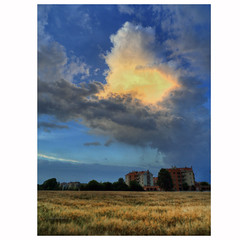 End of day (Robyn Hooz) Tags: nuvola clouds storm anvil sunset tramonto padova grano wheat spighe ears cielo polarizer