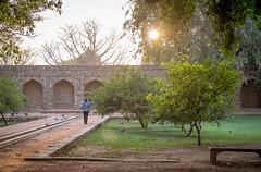 late afternoon (Robert Borden) Tags: lawn sunset memorial peaceful serene serenity fuji fujifilm fujifilmxt2 fujiphoto 50mm lens jesse new delhi gurgaon india asia travel global world