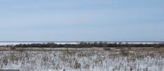 "Rybinsk ""sea"" (Rof Noirceur) Tags: rofnoirceur neitheroblivion russia vologda vologdaregion rybinskreservoir rybinsksea water snow ice tree field trip autotravel spring march road way canon canonpowershotsx60hs"
