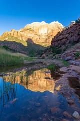 Zion_133-HDR (allen ramlow) Tags: zion national park utah landscape mountain sunrise water creek river sony a7iii