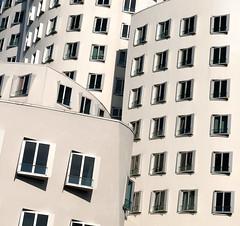 Windows (salvatore tardino) Tags: finestre bianco gehry prospetti aperture geometrie fuorisquadra moderno dusseldorf linee