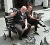20180612 Blackpool Fearless Pigeons (blackpoolbeach) Tags: blackpool pigeons birds food feeding fearless street seat people greggs