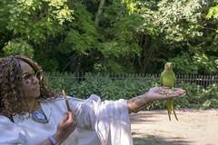 DSC_2191 (photographer695) Tags: wintrade rest recreation hyde park london feeding parakeet birds with nicole ross
