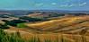 Toscana, Crete Senese (gerard eder) Tags: world travel reise viajes europa europe italy italia italien toscana toskana tuscany crete cretesenese landscape landschaft paisajes panorama outdoor natur nature naturaleza