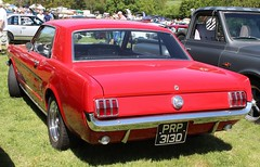 PRP 313D (Nivek.Old.Gold) Tags: 1966 ford mustang 289 4700cc