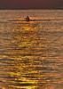 Lonsome 1.. (Ca_500000) Tags: berlin wannsee sunset sonnenuntergang ruderer