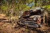 Trust The Days (Wayne Stadler Photography) Tags: preserved overgrown retro vintage rustographer abandoned classic plymouth derelict vehiclesrust rusty rustography junkyard oldcarcity georgia automotive white