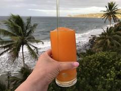 Petite Anse Hotel in Grenada (heatheronhertravels) Tags: grenada caribbean rume