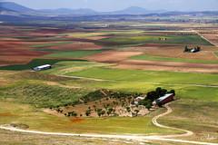 Campos de Castilla2 (Chelo Martín Moro) Tags: castilla la mancha campo landscape viñedos consuegra