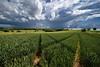 Dédoublement Orageux (Excalibur67) Tags: nikon d750 sigma 1224f4556iidghsm paysage landscape nature ciel cloud sky nuages orage groupenuagesetciel