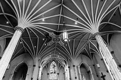 Got an urge to swing through the trees (sniggie) Tags: bardstown kentucky nelsoncounty romancatholic sistersofcharityofnazareth stvincentdepaulchurch architecture builtin1854 architectwilliamkeeley vault ceiling