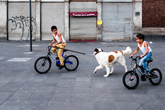 A candid shot in Mexico City (Frederik Trovatten) Tags: fuji fujifilm kids kid dog biking cycle bicycle mexico mexican mexicocity streetphotography street streets streetphotographer streetphotos cdmx everybodystreet x100f playing