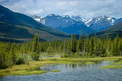 The Rockies (Jessie T*) Tags: viarail traintrip jaspernationalpark canadianrockies snowymountains river mountainside forest landscape mountains tree sky cans2s