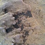 Vein with Sand, variant thumbnail