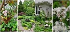 38 Tanbark Crescent, The Gardens of Windfields Estate, Through the Garden Gate, Don Mills, North York, Toronto, ON (Snuffy) Tags: 38tanbarkcrescent throughthegardengate gardensofwindsfieldestate donmills northyork toronto ontario canada