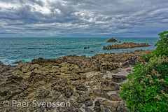 Tauranga, New Zealand - January 15, 2018:  Rock formations in Bay of Plenty (per.svensson@mac.com) Tags: 2018 natural landscape vacations seashore cliffs water background holidayevent waves sightseeing mountmaunganui volcano tree travel footpath hiking hawkes outdoors tourist family kiaora tauranga mountain oceania rock hike climbing summer historic spectacular nature bay newzealand seascape formation scenic hill picturesque sea reserve rockformation january idyllic scenery beautiful summertime mauao pacificocean noperson sky green hawkesbay tourism cliff dramatic