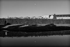 Moon over Brühl I (gambajo) Tags: 1year1town1lens brühl project blackandwhite blackwhite black white public outdoors park schlosspark augustusburg water pond lake moon reflection x100s fujix100s fujifilmx100s