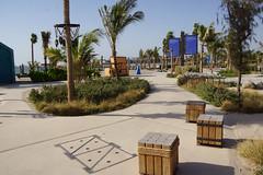 2018-06-FL-191353 (acme london) Tags: 2018 beach dubai lamer landscape meraas uae