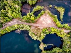Rakt ner (Jonas Thomén) Tags: aerial aerialphoto flygfoto sandåsen drone drönare sjö lake water vatten träd trees sand road väg dji mavic air