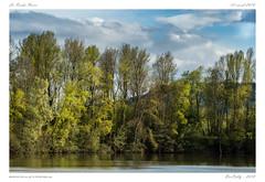 La Roche Noire (BerColly) Tags: france auvergne puydedome larochenoire etang ponds pauyage landscape arbres tress reflections ciel sky nuages clouds bercolly google flickr