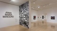 Museum, MOCA, Wall Graphics