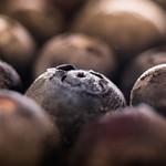 Blueberry thumbnail