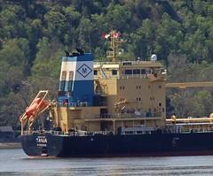 Tanja - IMO 9717527 (Jacques Trempe 3,35M hits - Merci-Thanks) Tags: stefoy quebec canada ship navire fleuve rive stlaurent stlawrence transportation vraquier bulker tanja