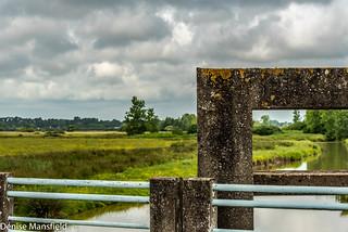 Marsh land (explored)