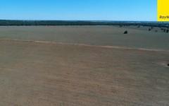 The Ranch Grassmere Road, Condobolin NSW