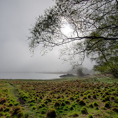 Lake District Morning (aha42 | tehaha) Tags: england lakedistrict uk lake nature trees 500x500