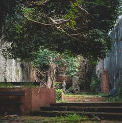 Forgotten Park (ep_jhu) Tags: oldsanjuan trees x100f abandoned viejosanjuan pr bench osj fuji parque park sanjuan puertorico fujifilm abandonado