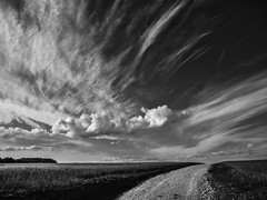 El escapista (una cierta mirada) Tags: landscape sky clouds cloudscape nature road bnw blackandwhite outdoors earth land