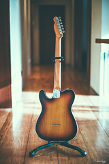 Fender 62 Telecaster Custom (MIJ) (Daniel Y. Go) Tags: nikon nikond810 d810 fx philippines guitar fender telecaster 62telecastercustom music