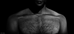 Touch (Jos Loll) Tags: chest hair man monochrome hairy