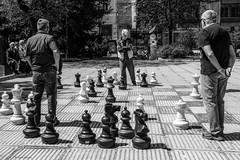 What Should I do...... (Laszlo Horvath.) Tags: sarajevo chess sakk monochrome blackwhite blackandwhite sigma1835mmf18art nikond7100