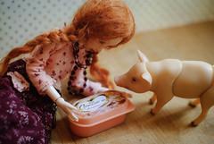 DSC_4689 (peregrina_tyss) Tags: pig movingdolls chucha happiness bjd obitsu haruka brynhild