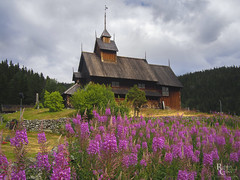 Medieval Norway Flowers and Sky (RobertCross1 (off and on)) Tags: 20mmf17panasonic em5 eidsborg europe norge norway omd olympus scandinavia stavkyrkje telemark tokke vesttelemark architecture building church clouds fireweed flowers forest landscape medieval stavechurch trees wildflowers